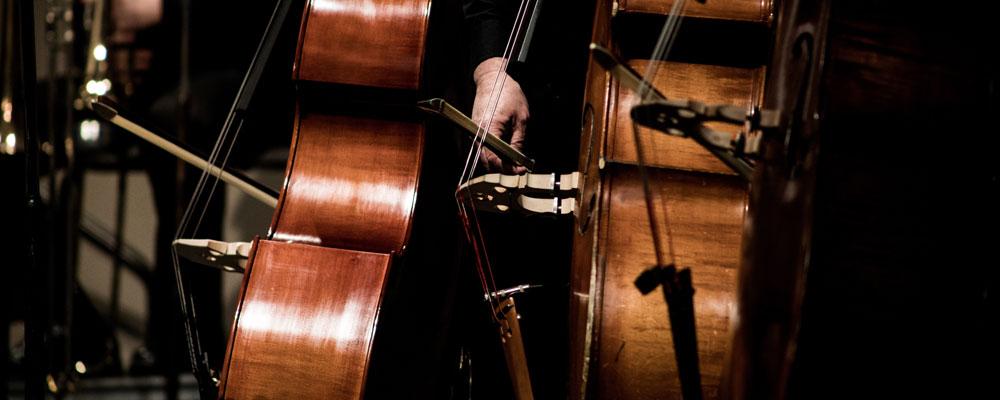 mehrere Streicher in einem Orchester